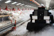 Livestock Robots