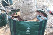 Wangara Horticultural Supplies: Largest Supplier of Easy-Fill™ Planter Bags and Top-Quality Horticultural Products to the Middle East