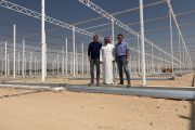 Large-scale 44 hectares greenhouse vegetable complex in the Kingdom of Saudi Arabia
