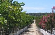 "Wangara Horticultural Supplies ""NEW PRODUCT LAUNCH"""
