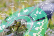 Smart Technologies Driving Tomorrow's Horticultural Production