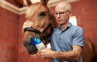 Boehringer Ingelheim receives approval for Aservo® EquiHaler®, industry first therapy for severe equine asthma