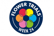 FlowerTrials® Board sets 6th April as deadline to cancel or proceed