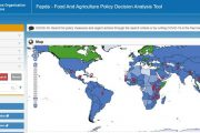 FAO rolls out toolkit for smart policymaking during the COVID-19 crisis