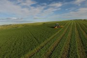 Barr-Ag - Hay & Grain Exporters