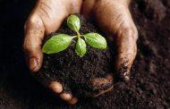 Mavitec presents new way of solving manure issues