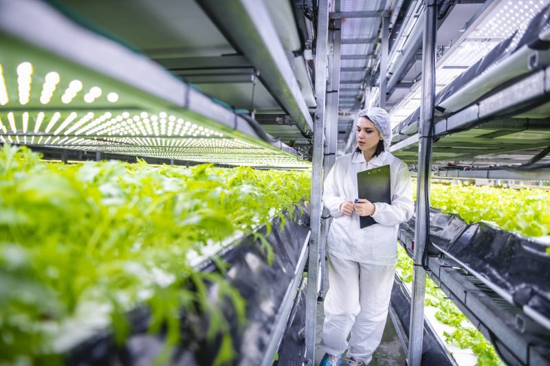 GreenTech webinar: Safe and secure food systems