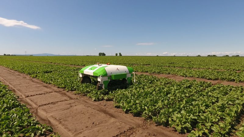 Strube signs a partnership agreement with Naïo Technologies and Fraunhofer Institute to develop innovative agricultural robotics solutions