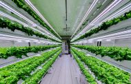 Smart Acres Vertical Farming Company Set To Launch in UAE This 2020