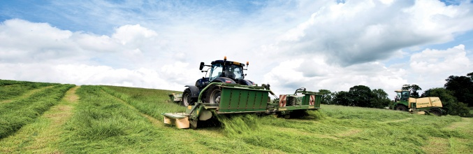 Take Control of Your First Cut Silage