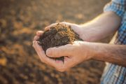Bayer takes steps to make carbon sequestration a farmer's newest crop opportunity