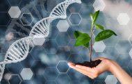 Breakthrough in global data exchange on plant breeding
