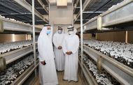 Minister of Climate Change and Environment Tours Modern Emirati Farms, Explores Ways of Enhancing Agri-tech in UAE