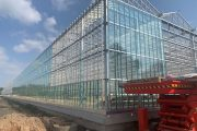 Signify expands Philips Horticulture research partner network in China by adding Yunnan AiBiDa Greenhouse Technology Co., Ltd. to serve the Chinese floriculture business