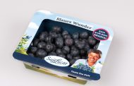 NATURE PUNNET: THE INNOVATIVE AND SUSTAINABLE PACKAGING FOR BERRIES BY SANLUCAR
