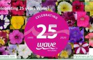 Wave Petunias celebrates 25 years of spreading colour