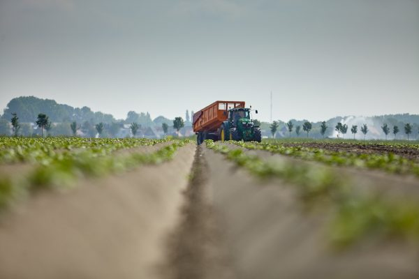 BKT STORIES: CHOOSING THE RIGHT EQUIPMENT  TO WORK 350,000 SQ.M. OF AGRICULTURAL LAND