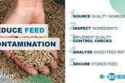 MANUFACTURING SAFE FEED FOR LIVESTOCK AND POULTRY