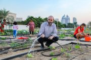 New Season of 'Community Farm' at Dubai Silicon Oasis