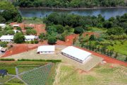 Scientist Discovers New Bee Species on Bayer Partner Farm in Brazil