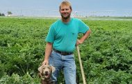 Valley Insights™ Gives Eagle View Farms a Bird's Eye View to Avoid Crop Loss