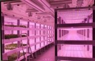 GBS Vertical Farms - Really modular – really sustainable, higher yield and…. realistic