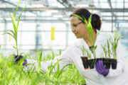 Bayer's unmatched R&D investment powers industry-leading Crop Science portfolio