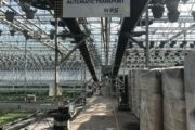 First potted plants transported with SmartFlo at Altman Plants