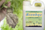 Discover RIZOBAC, a Biotechnology product developed for young plants