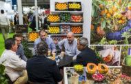 The fruit and vegetable sector is feeling upbeat about Fruit Attraction 2021, which will be an in-person event