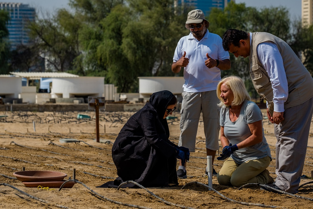 New Zealand AgTech companies well placed to meet UAE's  food and water security goals