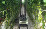 Biobest invests in Arugga and will distribute its pollination robots in the US and Canada