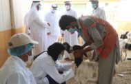 Ministry of Climate Change and Environment Expedites Livestock Testing Processes Ahead of Eid Al Adha