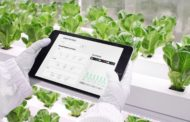 N.THING, the Seoul-Based Agri-Tech Company Joins GITEX 2021 to Exhibit Its Innovative Vertical Farming Technology