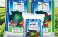 FAST GROW plus fertilizers help growers achieve yield maximization with reduced production cost