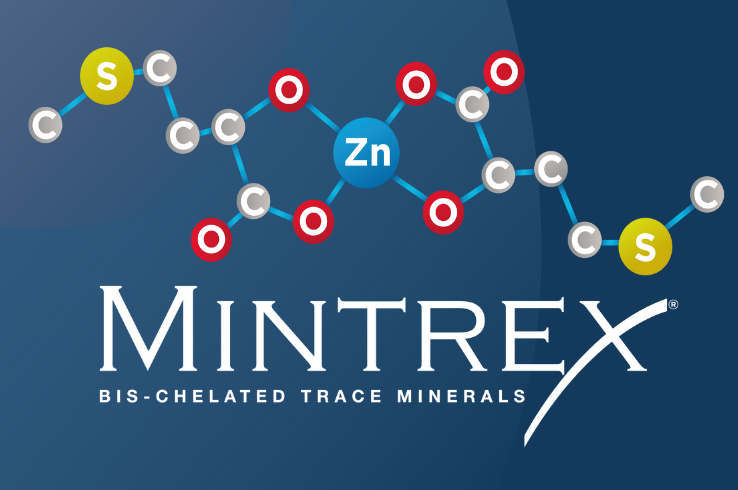 The expert's choice in mineral nutrition